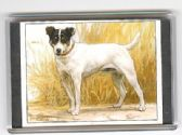 JACK RUSSELL TERRIER LARGE FRIDGE MAGNET 4